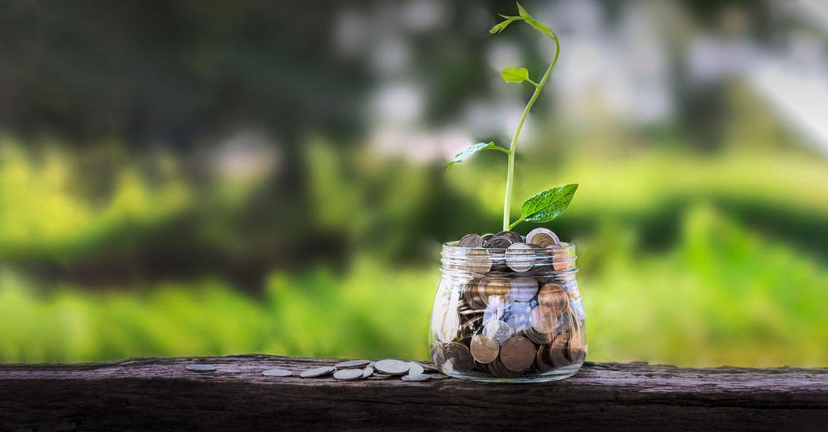 O que é ESG e qual sua importância