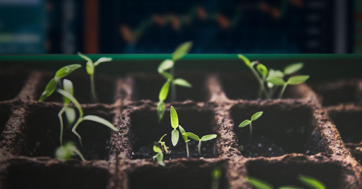 Pesquisas comprovam força dos investimentos ESG na crise